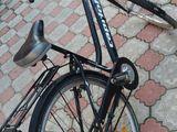 biciclete pentru Dame