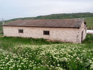 Incaperi in satul Panasesti