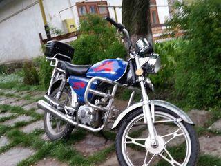 Viper orox r 50 doc md