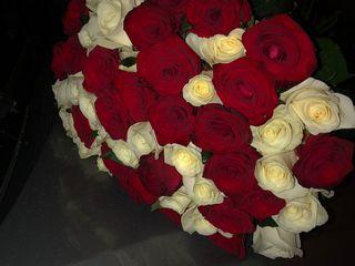 Trandafiri.Pret avantajos.Toate mărimile.