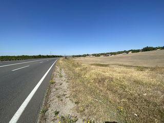 Teren 41 ari  prime linie la traseu Orhei Pelivan