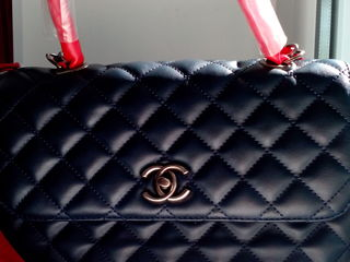 Celine MK Guess Gucci Prada Chanel любая 500 лей