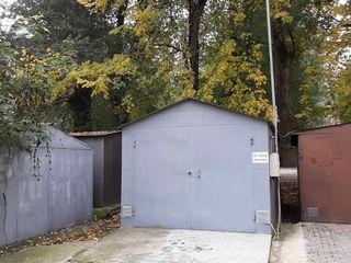Garaj linga casa ta - Botanica