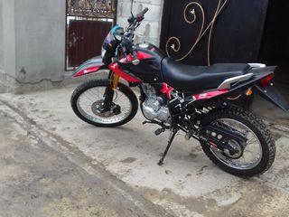Viper mrx200
