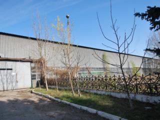 Продаем 2750м2 помещений на 40 сотках под бизнес в производственной зоне по ул.Волунтарилор!