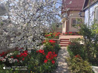 Продам дом в Григориополе