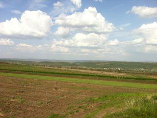 Cumpăr teren agricol în Soltănești