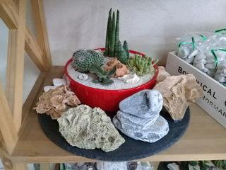 Lucrare din piatra naturala si plante vii. Cel mai original cadou pentru orice virsta si ocazie.