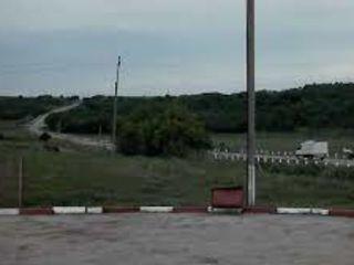 Проект консолидации земельного массива размером свыше 300 Гектар