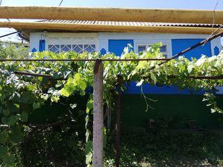 Продаю дом в г.Резина