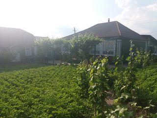 Vind casa in satul Hirtopul Mare sau schimb pe apartament in orasul Chisinau