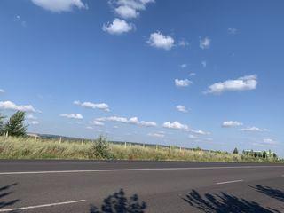1,15 га..84 х148 Гидигич - Кожушна, Страшенская трасcа Участок ограждён, на берегу озера 66000