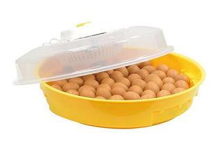 Incubator 70 ouă Puisor 102TH (termohidrostat)/Инкубатор 70 яиц (термогидростат)/Livrare Gratuita