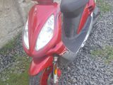 Honda sim