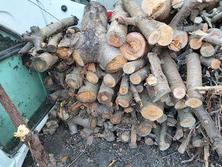Резаные дрова 1000 лей за всё.