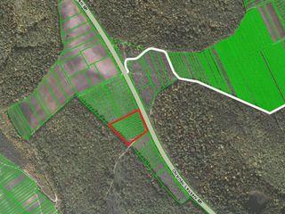 Vind 2,5 hectare de pamant pe traseul Chisinau-Leușeni