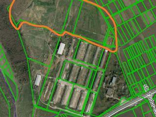 Va oferim spre vinzare teren preabil pentru agricultura in r. Ialoveni, s. Danceni. 700 €