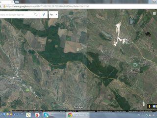 Продам участок 36 га леса с озером, Teren forestier cu lac 36 ha, Foarte ieftin!!!
