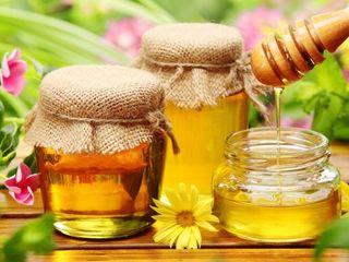 Cumpar miere de albini la cel mai bun pret / покупаю мед пчелиный по лучшей цене