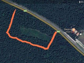 4 hectare Dumbrava