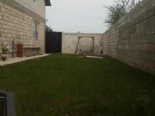 Doua case intr-o ograda Chetrosu Anenii Noi