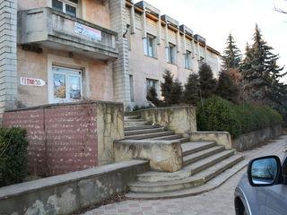 Продажа или аренда.500 квадратов в городе Рышканы