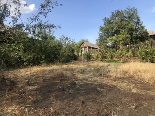 Vind casa in satul Cimiseni