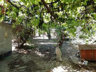 Продаю старый дом с землёй нa Ботанике