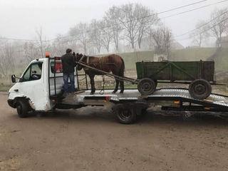 Эвакуатор Evacuator 24/24 in orice directie, pina la 3.5 tone Chisinau. De la 150 lei apel fals.