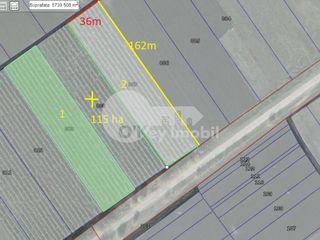 Teren agricol cu suprafața de 115 ari, pentru depozit/frigider, Colonița 500 €