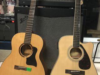 Фирменные гитары от лучших фирм-производителей в музыкальном магазине Pro Arta