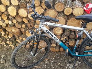 Bicicleta Senator(Mesenger)