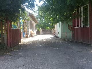 Casa an sat gribova