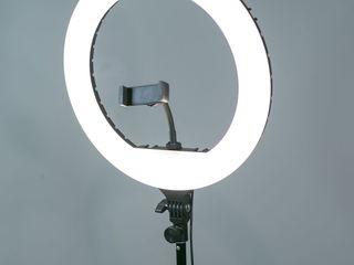 Профессиональная напольная кольцевая лампа. Бесплатная доставка!