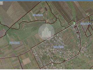 Teren pentru constructi Statie Peco, r-nul Drochia, s.Necoreni -0.30 ha