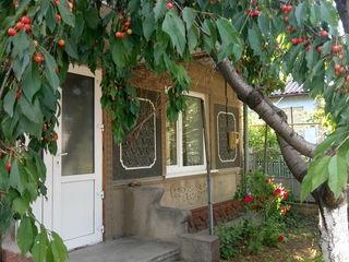 2 Дома Автономка-антифриз газ вода кан-ция Евро Ремонт окна salamander подвал печка колодец 6 сот.
