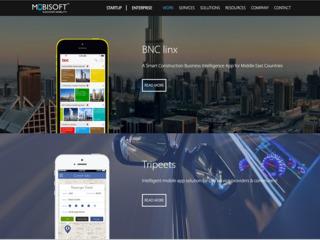 Realizare site profesional la cheie de la 100 euro