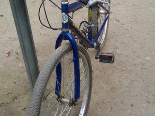Велосипед Adriatica