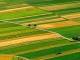 Cumparam teren cu destinatie agricola,de la 100 - 500 ha.