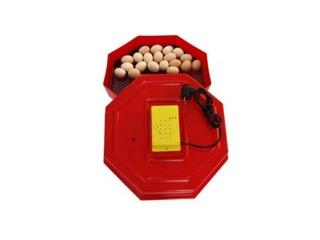 Incubatoare de oua la preturi avantajoase. La dispozitie modele cu rotire automata + cantitate mare