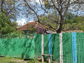 Casa la sol pe 16 sote, in s. Hirbovat, r-n Calarasi + 2 terenuri extravilan de 30 sote.