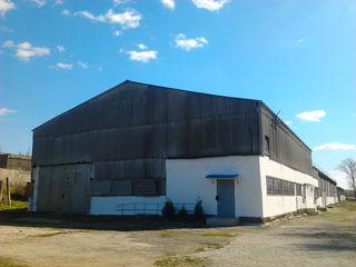 Продаются складские помещения 2500кв.м. г.Чадыр-Лунга + территория 0.8га