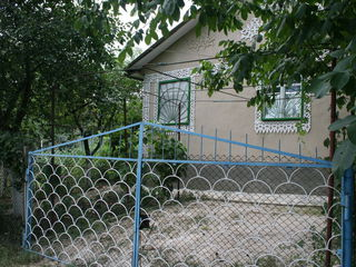 Дом дачя 10000euro
