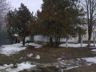 Продается дом в с.Згурица