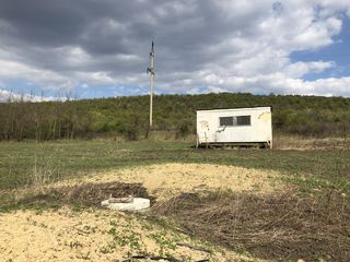 Teren agricol 3,7 ha, mun. Chisinau, 4 km, linga s. Bacioi. Investitia corecta a banilor DVS