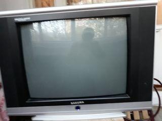телевизоh  sakura