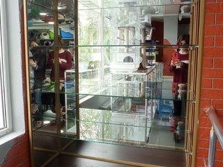 Торговая витрина