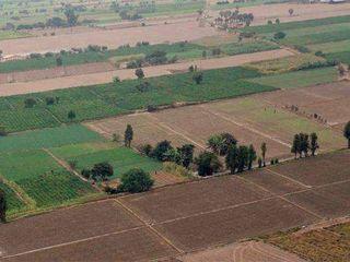 Cumpăr teren agricol in r-n Ialoveni. 5-20 hectare de pămînt in apropierea drumului