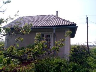 Срочно  дом дача участок 6 соток (в 3 км от крикова) пашканы,pascani