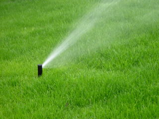 Plantarea si irigarea gazonului.